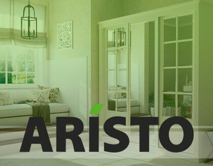 Аристо 419-326